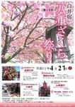 八重桜まつり5.jpg
