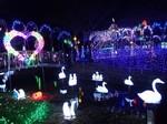 榛名湖イルミネーション2.jpg