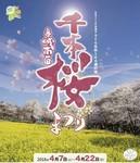 赤城南面千本桜まつり.jpg