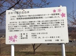 kawazizakurakanban1.JPG
