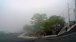 霧の朝.JPG