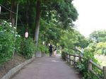 あじさい公園1.jpg