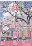 しぶかわ桜まつり.JPG