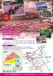 みさと芝桜公園1.jpg