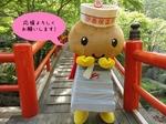 ゆるキャラグランプリ2013.jpg