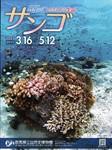 サンゴ1.jpg