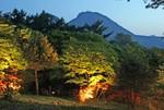 上ノ山ライトアップ.jpg