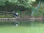 小野池あじさい公園3.jpg