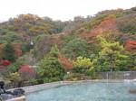 屋上露天風呂からの紅葉1.jpg