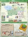 憩いの森2.jpg