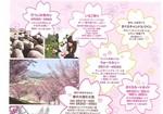 春フェア3.jpg