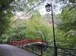河鹿橋の様子.jpg
