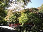 河鹿橋紅葉1.jpg