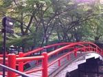河鹿橋1.jpg