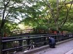 河鹿橋2.jpg