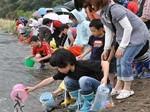 清流祭り1.jpg