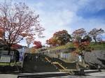 石段街の紅葉.jpg