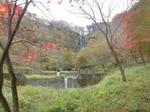 船尾滝の紅葉1.jpg