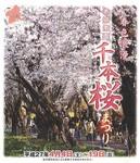 赤城南面千本桜.jpg