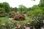 赤城自然園4.jpg
