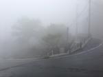 霧(朝).jpg